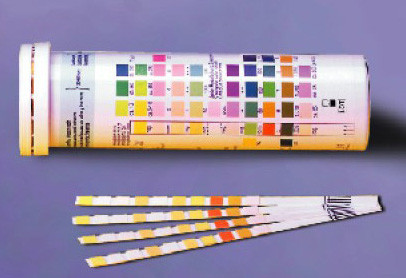 GP Test Strips 10