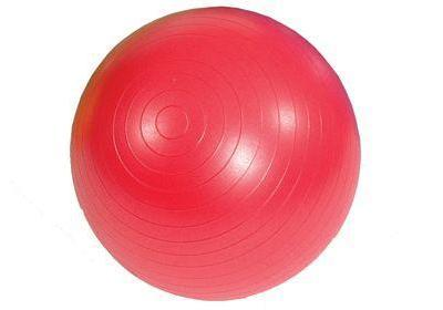 Gym Exercise Ball - 55cm