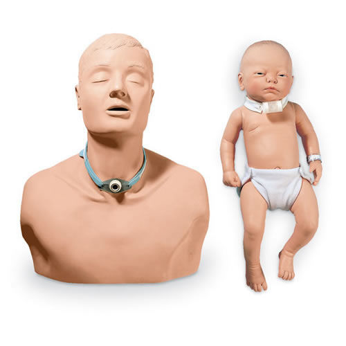 Adult and Infant Tracheotomy Training Manikins