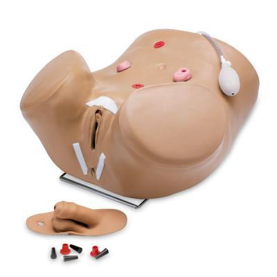 Male Nursing Manikin - Female Organ